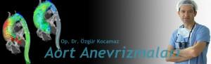 anevrizmabanner1